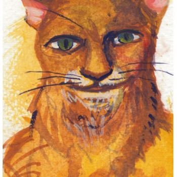 Orange Cat portrait 2014
