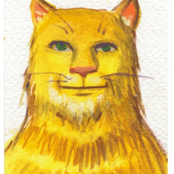 Yellow Cat 2014